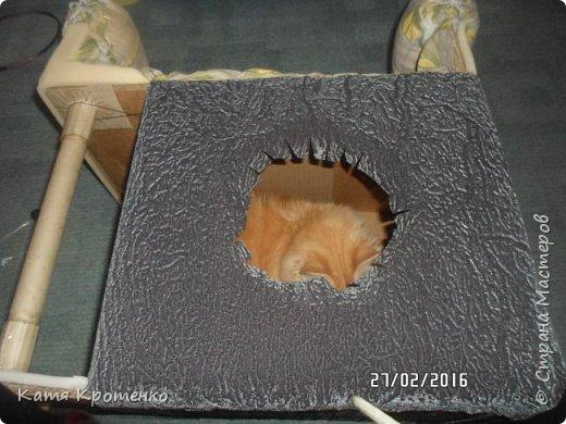 Приветствую всех жителей СМ. Наш любимец - Крысилий очень любит всякие коробки, пуфики и диваны, вот решила сотворить ему свой собственный. это мой первый кошачий дом. размер: Длина - 53см, высота - 55 см, ширина - 32 см. фото 7