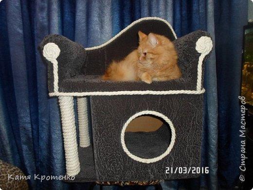 Приветствую всех жителей СМ. Наш любимец - Крысилий очень любит всякие коробки, пуфики и диваны, вот решила сотворить ему свой собственный. это мой первый кошачий дом. размер: Длина - 53см, высота - 55 см, ширина - 32 см. фото 1