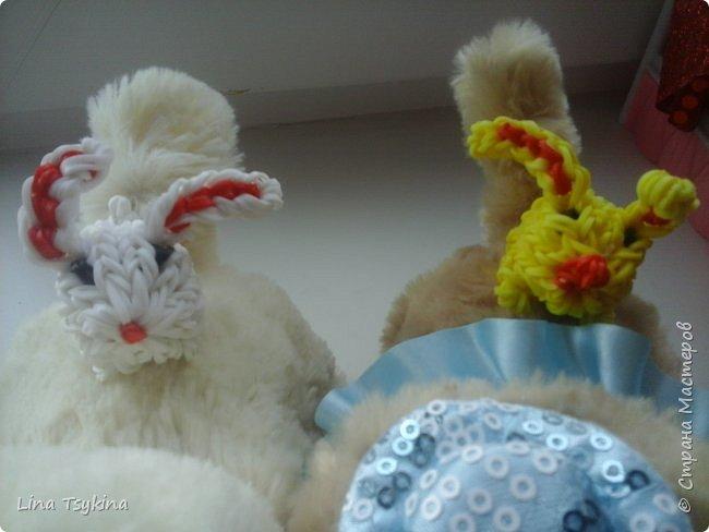 Всем привет! Сегодня я хочу познакомить вас с Владленой  - сестрёнкой Лапочки Анкета: Имя Владлена Дата рождения 20.03.16 Любимая еда морковь фото 5