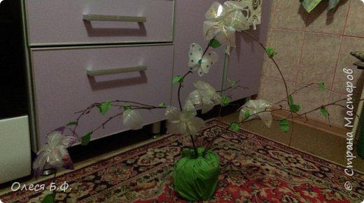 цветочки зацвели, материал веточки дерева органза проволока двухсторонний скотч ведерко и зеленая бумага также лаки разных оттенков для придания цвета нашим цветочкам фото 1