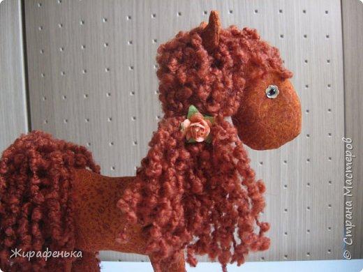 Лошадку Шоколадку сшила своей подруге на День Рождения. фото 2