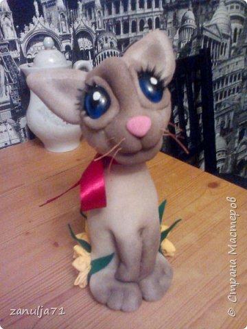 Кошка фото 4