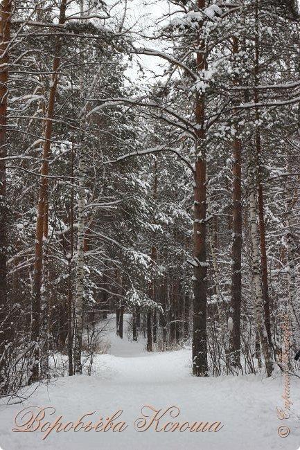 Доброго времени суток друзья. Сегодня я наконец то выложила свои зимние фотографии этого года. Приятного просмотра! фото 6
