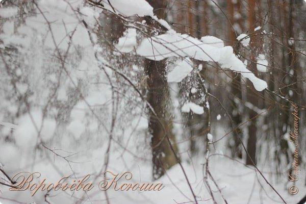 Доброго времени суток друзья. Сегодня я наконец то выложила свои зимние фотографии этого года. Приятного просмотра! фото 11