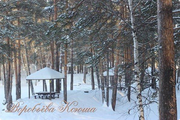 Доброго времени суток друзья. Сегодня я наконец то выложила свои зимние фотографии этого года. Приятного просмотра! фото 26