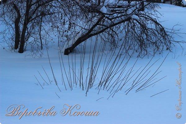 Доброго времени суток друзья. Сегодня я наконец то выложила свои зимние фотографии этого года. Приятного просмотра! фото 27