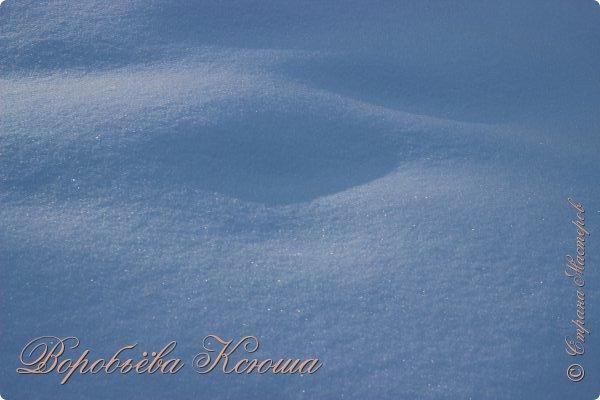 Доброго времени суток друзья. Сегодня я наконец то выложила свои зимние фотографии этого года. Приятного просмотра! фото 28