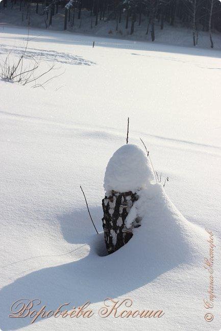 Доброго времени суток друзья. Сегодня я наконец то выложила свои зимние фотографии этого года. Приятного просмотра! фото 32