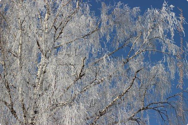 Доброго времени суток друзья. Сегодня я наконец то выложила свои зимние фотографии этого года. Приятного просмотра! фото 49