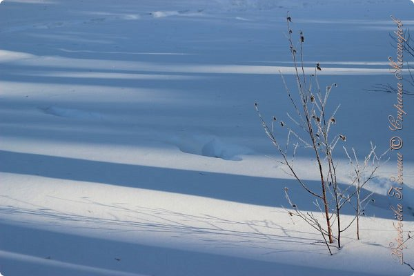 Доброго времени суток друзья. Сегодня я наконец то выложила свои зимние фотографии этого года. Приятного просмотра! фото 51