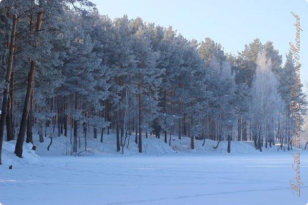 Доброго времени суток друзья. Сегодня я наконец то выложила свои зимние фотографии этого года. Приятного просмотра! фото 52