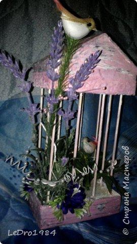 Клетка с птичками фото 2