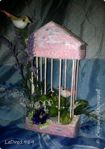 Клетка с птичками фото 1