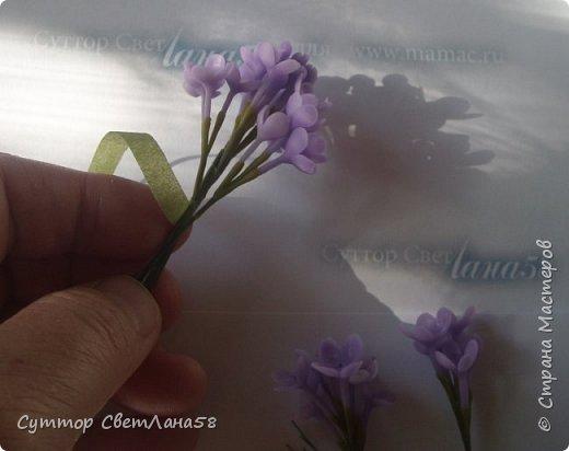 Скоро зацветёт сирень ! У нас появится возможность изготовить для себя - любимых веточку сирени с предоставленного природой образца ! Намного легче лепить любой цветок с натуры.Можно ,для начала, слепить имитацию сирени- брошь, кулон или очень маленькие веточки для небольших букетиков.  На фото живая веточка и моя ( здесь ещё не законченная)  фото 35