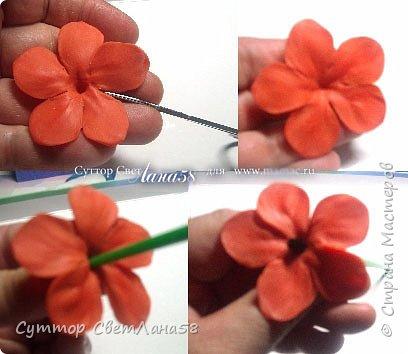 Сегодня научимся раскатывать цветочки из 4 и 5 лепестков  фото 17