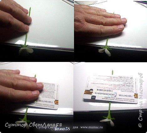 Сегодня научимся раскатывать цветочки из 4 и 5 лепестков  фото 23