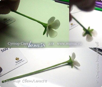 Сегодня научимся раскатывать цветочки из 4 и 5 лепестков  фото 25