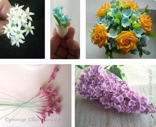 Сегодня научимся раскатывать цветочки из 4 и 5 лепестков  фото 1