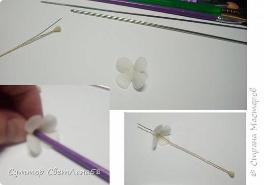 Сегодня научимся раскатывать цветочки из 4 и 5 лепестков  фото 4
