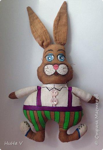 Кролик фото 6