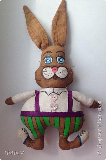 Кролик фото 7