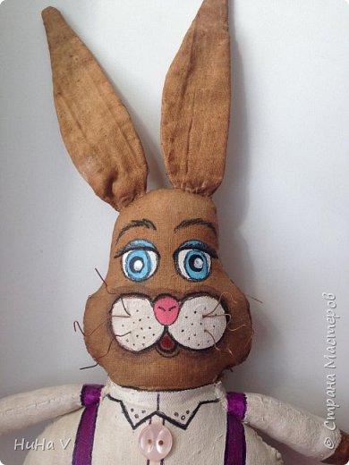 Кролик фото 8
