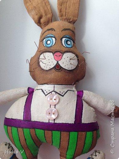 Кролик фото 9