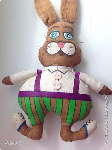 Кролик фото 10