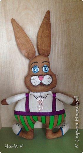 Кролик фото 11