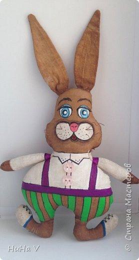 Кролик фото 13