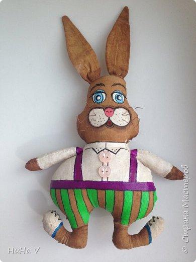 Кролик фото 15