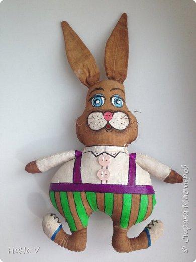 Кролик фото 16