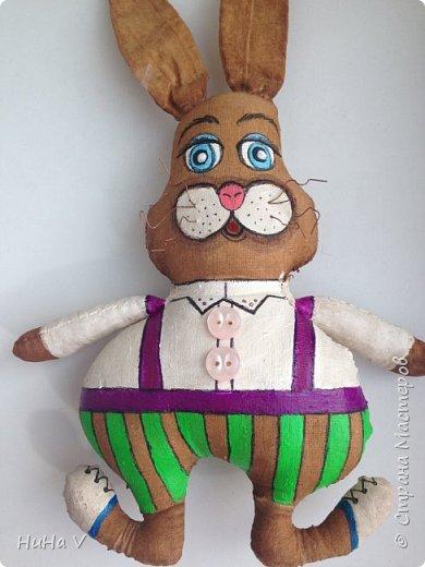 Кролик фото 18