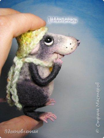 Крысенок Семёнчик - малыш, ростом всего 9 см, учитывая шапочку. Семёнчик выполнен в технике сухого валяния. Ручки, ножки и хвостик - на проволочном каркасе. Нос сделан из кожи. Шапочка и шарфик связаны из пряжи крючком.  В ручках у него уже есть она хрустящая булочка, но Семёнчик озадачен, где же здесь еще спрятаны вкусняшки.. Может, они в сундуке??? фото 10