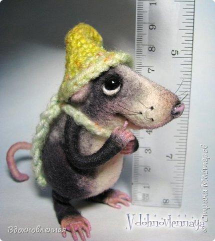 Крысенок Семёнчик - малыш, ростом всего 9 см, учитывая шапочку. Семёнчик выполнен в технике сухого валяния. Ручки, ножки и хвостик - на проволочном каркасе. Нос сделан из кожи. Шапочка и шарфик связаны из пряжи крючком.  В ручках у него уже есть она хрустящая булочка, но Семёнчик озадачен, где же здесь еще спрятаны вкусняшки.. Может, они в сундуке??? фото 14