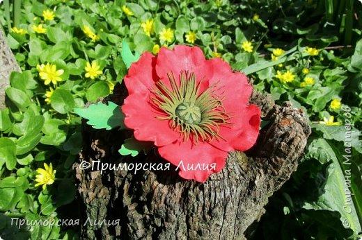 Мне яркие цветы мака всегда дарят тепло и летнее, солнечное настроение... Вот такой комплект украшений я сделала на днях: ободок и заколка-брошь. фото 4