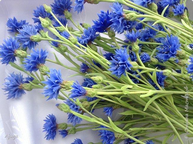 Васильки для  букета полевых цветов. Ручная работа. Хф. фото 11