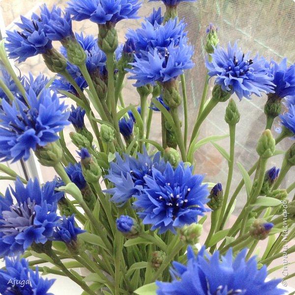 Васильки для  букета полевых цветов. Ручная работа. Хф. фото 6