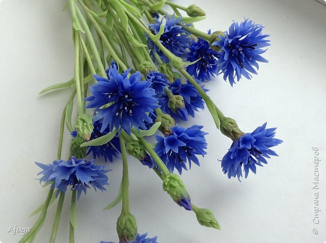 Васильки для  букета полевых цветов. Ручная работа. Хф. фото 10