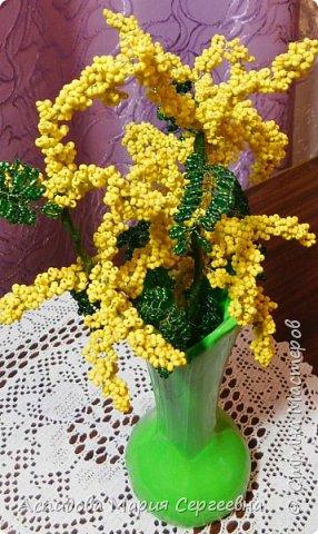 "цветок в горшке ""Немофила"" фото 2"