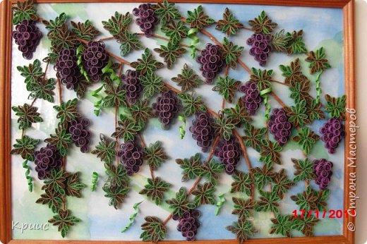 Грозди винограда в технике квиллинг фото 1