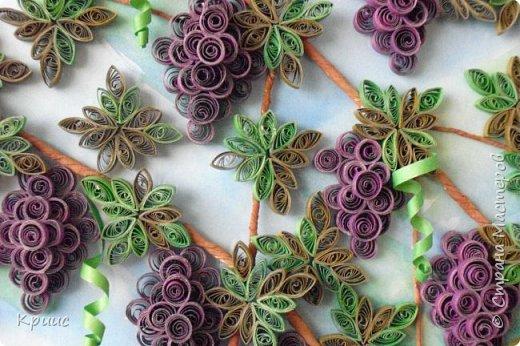 Грозди винограда в технике квиллинг фото 2