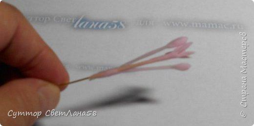 Веточка фрезии из  холодного фарфора.  Поэтапный  мастер - класс . фото 3