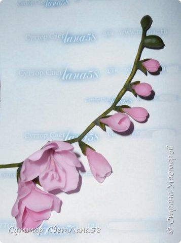 Веточка фрезии из  холодного фарфора.  Поэтапный  мастер - класс . фото 21