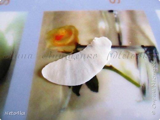 Заварной холодный фарфор с целлюлозой фото 21