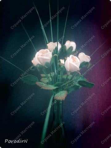 Мини композиция из семи роз. Абсолютно не хотела фотографироваться. фото 2