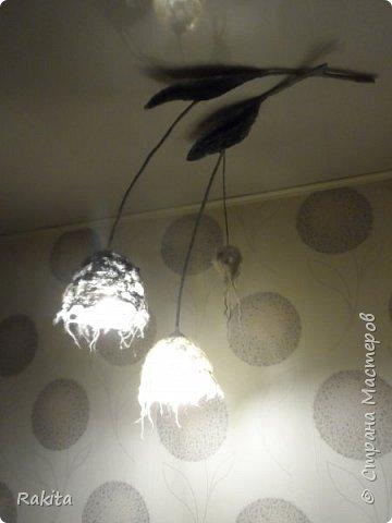 Еще раз здравствуйте, сегодня хочу показать еще одну работу, валяный светильник над кухонным столом. Извините за плохое качество фотографий...лучше не сделать.Листики и стебли из массы папье-маше, плафоны валяные из шерсти, лампы светодиодные (не греются) .  фото 6