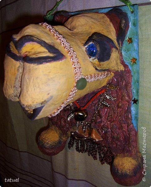 Всем привет! Этот верблюжонок из работ-долгостороев.  Считала, что он получился недостаточно похожим, да и первоначальный цвет  не радовал. Пришлось за него взяться, переделать форму глаз, цвет морды, добавить сбрую.  Сейчас он стал намного симпатичнее. фото 2