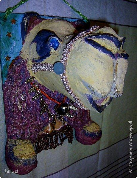 Всем привет! Этот верблюжонок из работ-долгостороев.  Считала, что он получился недостаточно похожим, да и первоначальный цвет  не радовал. Пришлось за него взяться, переделать форму глаз, цвет морды, добавить сбрую.  Сейчас он стал намного симпатичнее. фото 6