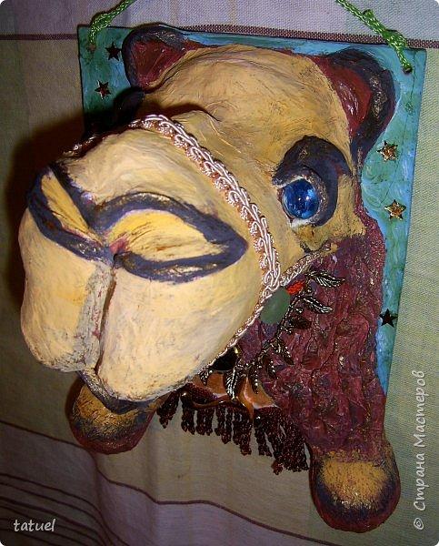 Всем привет! Этот верблюжонок из работ-долгостороев.  Считала, что он получился недостаточно похожим, да и первоначальный цвет  не радовал. Пришлось за него взяться, переделать форму глаз, цвет морды, добавить сбрую.  Сейчас он стал намного симпатичнее. фото 3